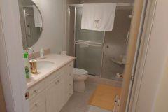 Original guest bathroom before renovations