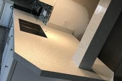 L-Shaped kitchen remodel in Tamarac, FL