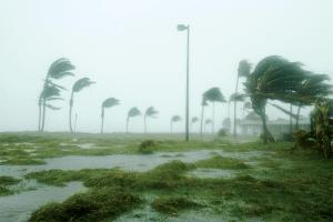 Hurricane Impact Windows in Broward County, FL